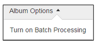 batchimageoptions.PNG