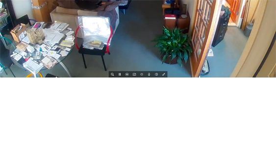 Arlo Pro 2 expanded live view.jpg