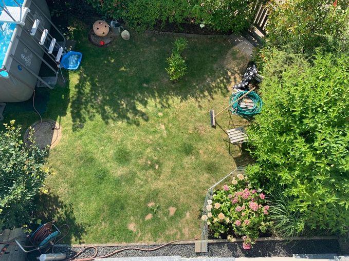 Blick von oben auf den Garten.jpeg